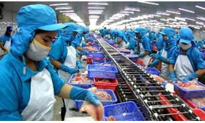 PANGASIUS EXPORTS TO REACH US$ 1.75 - 1.85 BILLION IN 2015