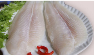 REGULATION ON 83 PERCENT HUMIDITY ON EXPORTED PANGASIUS WAS DELAYED